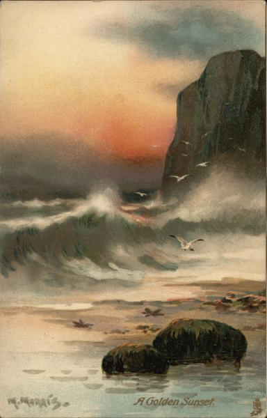A Golden Sunset - Waves Against Large Rock, Flying Seagulls