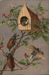 Birdhouse with Beetles