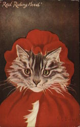 Red Riding Hood - Cat Wearing Red Cape and Hood