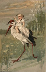 Baby Wearing Bib Riding on Stork's Back