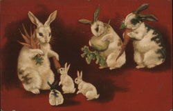Rabbits and Bunnies Eating Carrots and Turnip