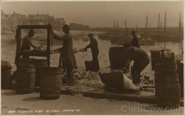 Cleaning Fish St. Ives England