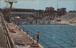 Municipal Pool and Swimming Hall of Fame Postcard