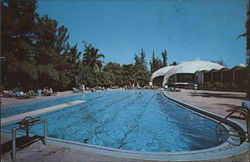 El San Juan Hotel - Swimming Pool and Lemon Tree Restaurant Postcard