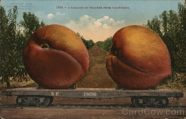 A Carload of Peaches From California Exaggeration