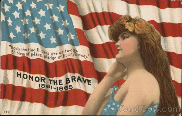 HONOR THE BRAVE 1861-1865 Patriotic
