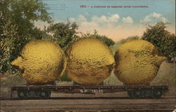 A Carload of Lemons from California