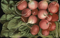 Still Life of Radishes, Die Cut Card