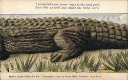 Alligator (1-B Middle, 2nd Card in Set)