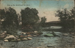 View on the Maple River