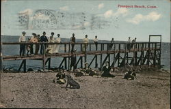 People Posing on a Pier