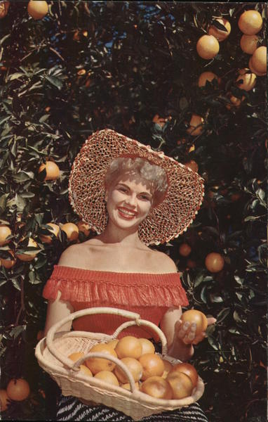 Florida's Orange Groves Women