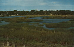 The Marshes With Wellfleet in the Background