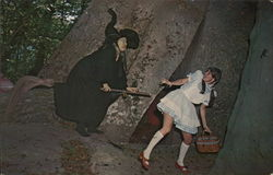 The Wicked Witch of the West on her Broom, the Land of Oz