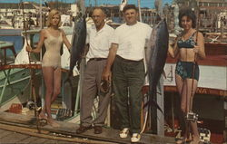 Sport Tuna Fishing, Cape May Marina