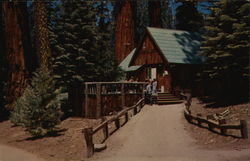 Giant Forest Lodge