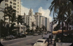 Luxurious Hotels Along Collins Avenue