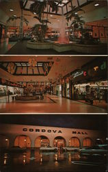 Cordova Mall Shopping Center