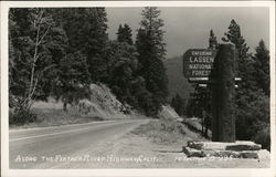 Along the Feather River Highway - Lassen National Forest Postcard