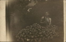 Man with Large Pile of Pears