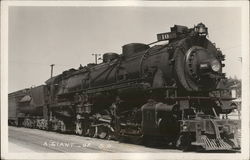 #10 A Giant of Southern Pacific