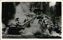 Hauling Logs in 1905