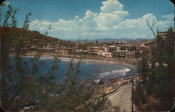 Picturesque Olas Altas Boulevard Postcard