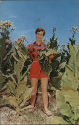 Virginia Maiden in a Tobacco Field