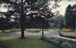 Vickers Park