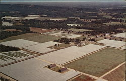 Aerial View of Tobacco Valley