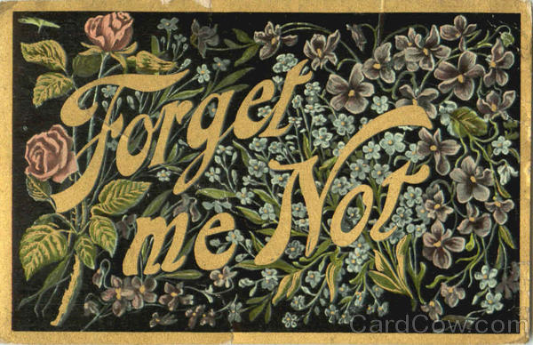 Forget Me Not Phrases & Sayings