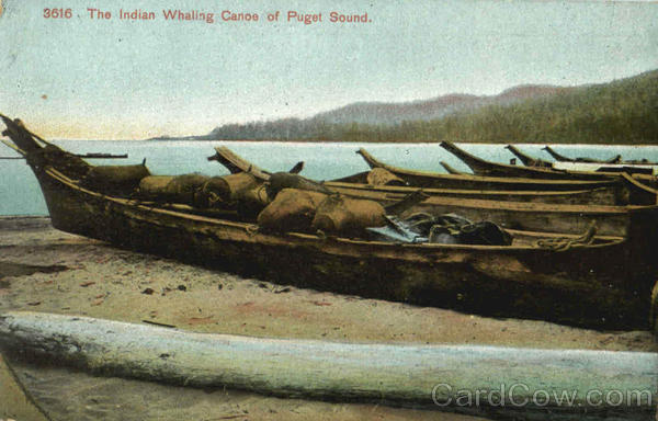 The Indian Whaling Canoe Of Puget Sound Native Americana