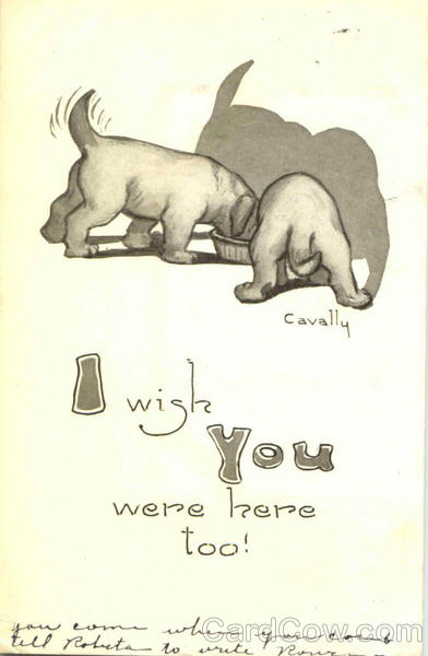 Wish you were here too Cavally Dogs