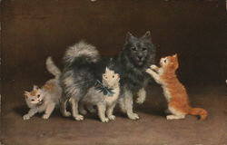 A Gray And White Cat With Her Three Kittens