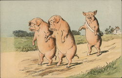 THREE PIGS WALKING DOWN ROAD
