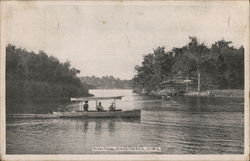 River View Postcard