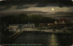 Macatawa Park By Night Postcard
