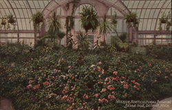Interior, Horticultural Building, Belle Isle