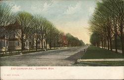 East Ludington Ave