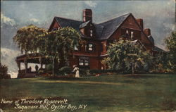 Home of Theodore Roosevelt