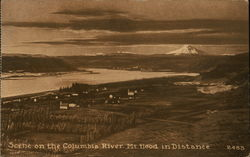 Scene on the Columbia River, Mt. Hood in Distance. Postcard