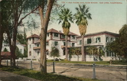Old Palms and Club House