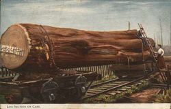 Log Section on Cars