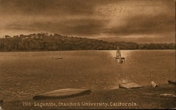 Lagunita, Stanford University