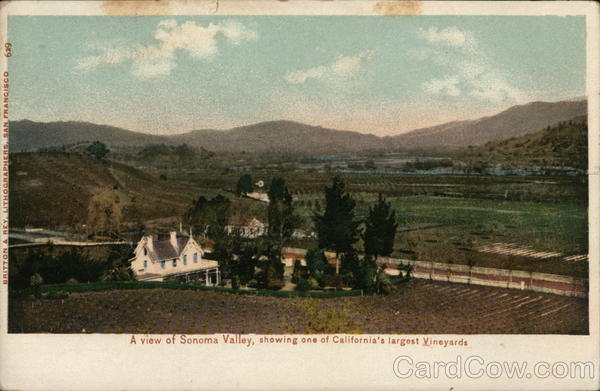 A View of Sonoma Valley California