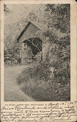 Bridge Vernon Road Postcard
