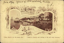 "Hotel Palm Beach ""Under the Southern Palm"" Postcard"