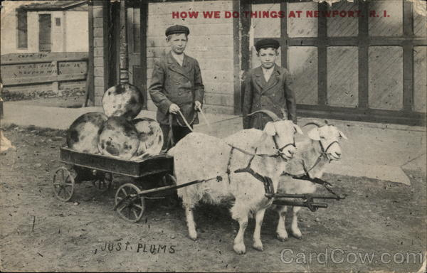 How We Do Things at Newport - Boys with Goat Cart Rhode Island
