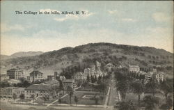 The College in the hills, Alfred, N.Y.