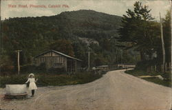 State Road in the Catskill Mountains